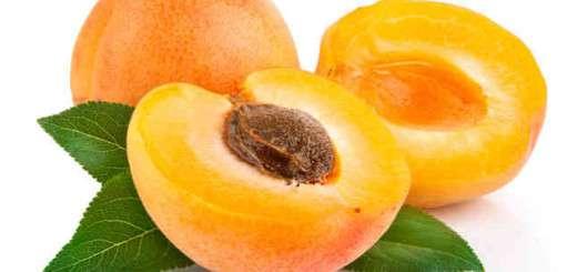 apricotsFOTM_646x430