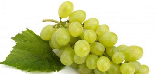 bundle-of-green-grapes