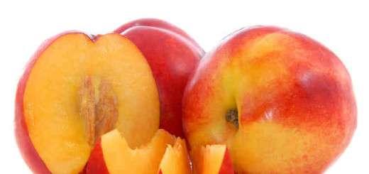 rastitelnite-hrani-osiguryavashti-dobro-zdrave-i-normalno-kravno-nalyagane